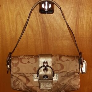 Brown and hold Coach bag